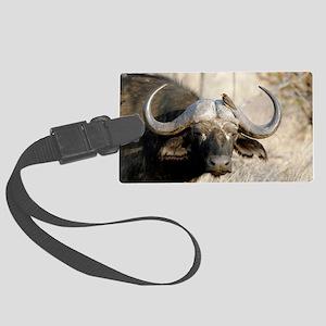 Cape buffalo and yellow-billed o Large Luggage Tag