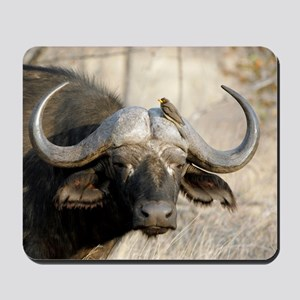 Cape buffalo and yellow-billed oxpecker Mousepad
