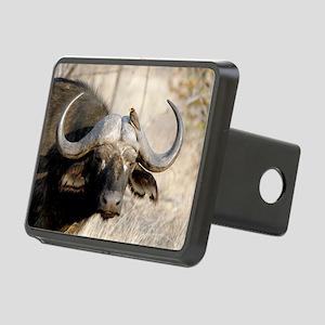 Cape buffalo and yellow-bi Rectangular Hitch Cover