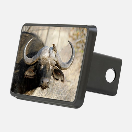Cape buffalo and yellow-bi Hitch Cover