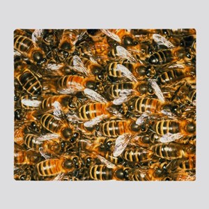 Close-up of honey bees (Apis mellife Throw Blanket