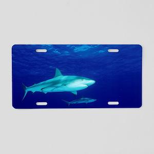 Caribbean reef sharks Aluminum License Plate