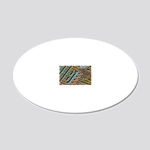 Coloured SEM of surface of a 20x12 Oval Wall Decal