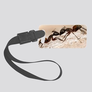 Carpenter ants fighting Small Luggage Tag