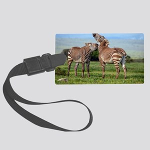 Cape mountain zebra stallions sp Large Luggage Tag