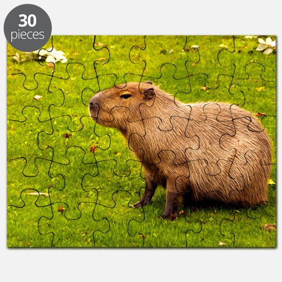 Capybara Puzzle