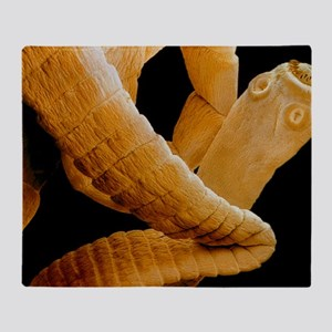 Coloured SEM of a tapeworm, Taenia s Throw Blanket