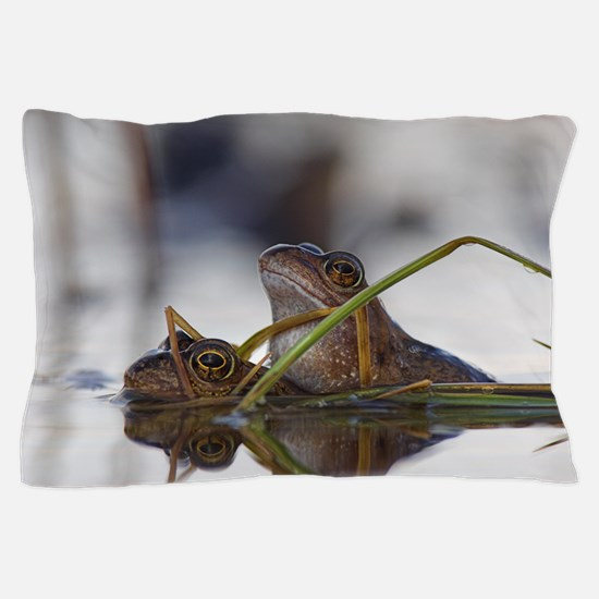 Common frogs mating Pillow Case