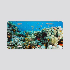 Coral reef Aluminum License Plate