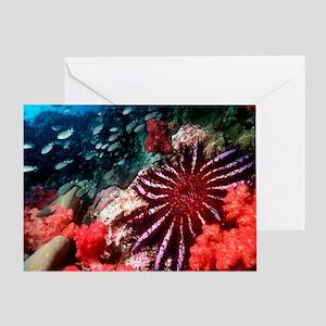 Crown-of-thorns starfish Greeting Card