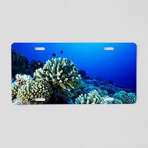 Coral reef Aluminum License Plate