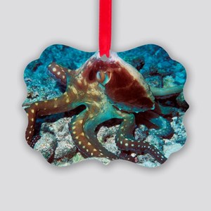 Day octopus Picture Ornament