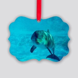 Dolphin in captivity Picture Ornament