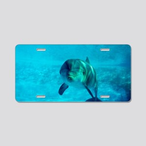 Dolphin in captivity Aluminum License Plate