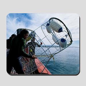 Divers preparing a shark cage Mousepad