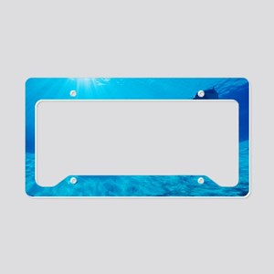 Dolphins in captivity License Plate Holder