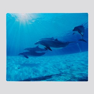 Dolphins in captivity Throw Blanket