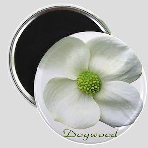 Flower Dogwood Magnet