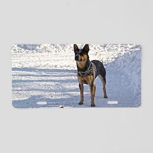 Nomi with her bone Aluminum License Plate