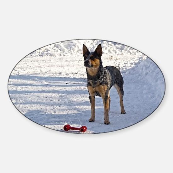 Nomi with her bone Sticker (Oval)