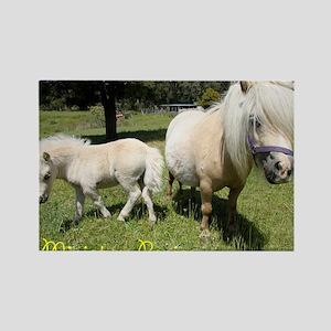 Mini Pony Rectangle Magnet