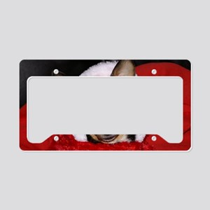 AbbeyCal7 License Plate Holder