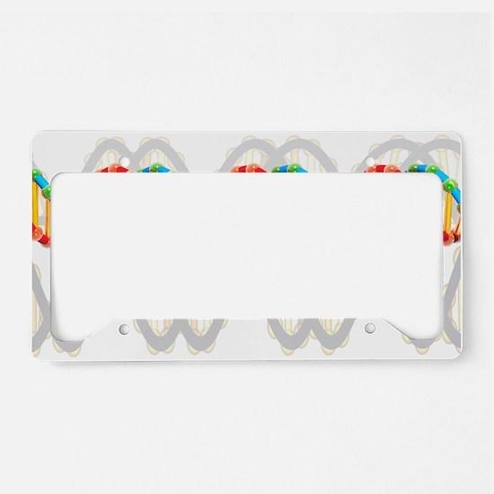 DNA molecule, artwork License Plate Holder