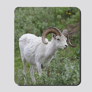 ipadMini_Sheep_1 Mousepad
