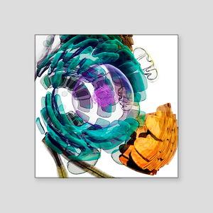 "Animal cell, artwork Square Sticker 3"" x 3"""