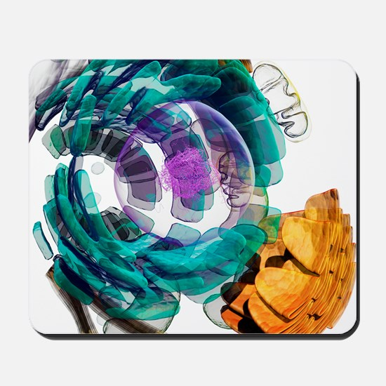 Animal cell, artwork Mousepad