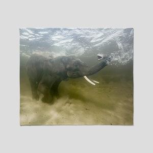 African elephant swimming Throw Blanket