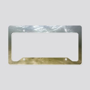 African elephant swimming License Plate Holder