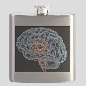 Brain, artwork Flask
