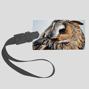 Eagle Owl 3x5 Rug Large Luggage Tag