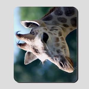 Rothschild Giraffe Slider Case Mousepad