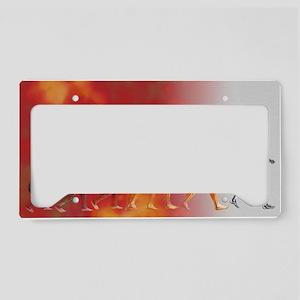 Artificial intelligence License Plate Holder