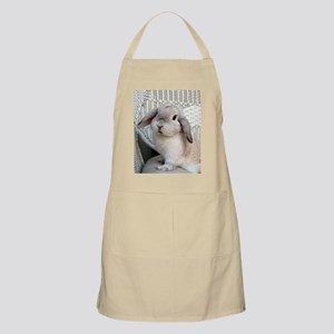 Scooter Necklace Apron