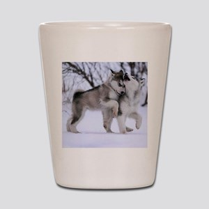 Wolves Playing Shot Glass