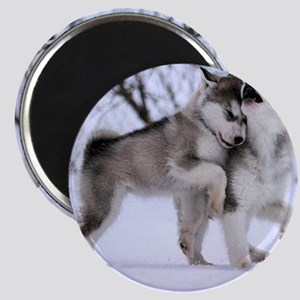 Wolves Playing Magnet