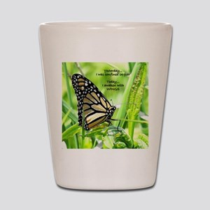Thinking Butterfly Shot Glass