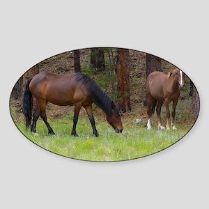 Wild Horses Sticker (Oval)