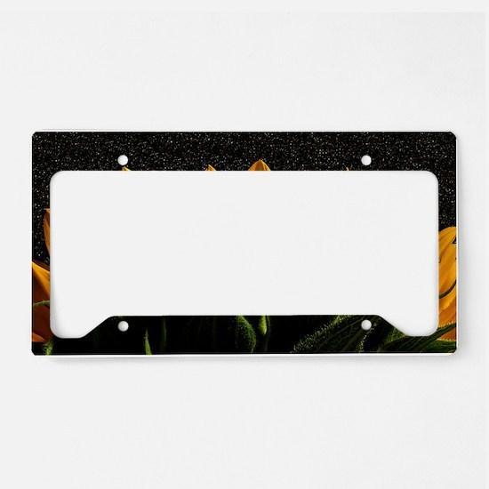 Genesis License Plate Holder