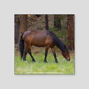 """Wild Horse Square Sticker 3"""" x 3"""""""