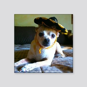 "Mexican Chihuahua Square Sticker 3"" x 3"""