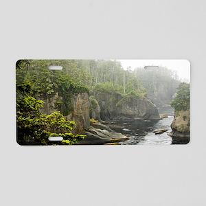 01jan-wildeshots-072512_035 Aluminum License Plate