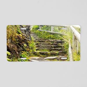 01jan-wildeshots-061812_027 Aluminum License Plate