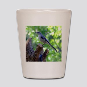 Northern Mockingbird Shot Glass