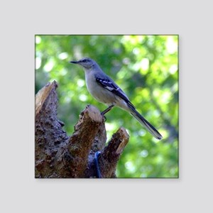 "Northern Mockingbird Square Sticker 3"" x 3"""