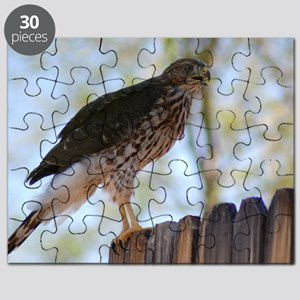 Hawk on a fence Puzzle