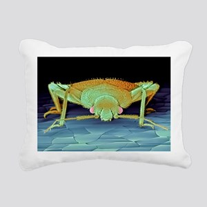 Bed bug, SEM Rectangular Canvas Pillow